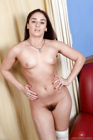 sexy brunette hairy pussy