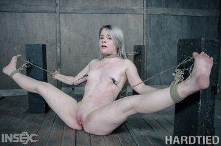 american cruel tied