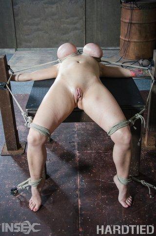 american bdsm tied bondage