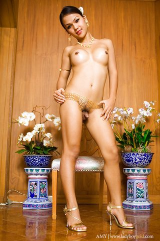 stripping ladyboy gold