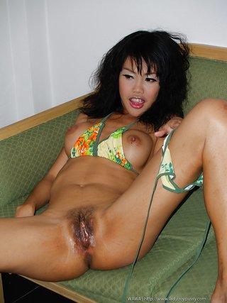 kinky asian ladyboy pussy