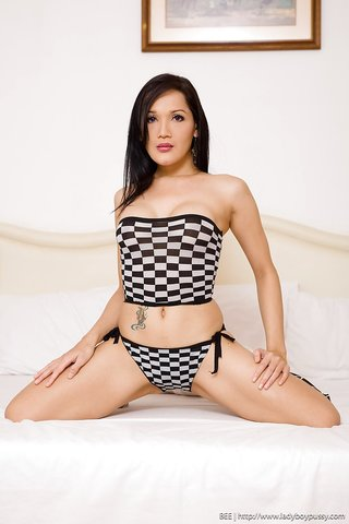 asian beautiful shemale fuck