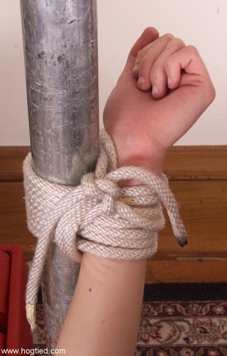 hogtied tied